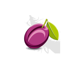 Plum® Safety